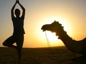yogaTours